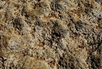 La pierre de Béalcourt