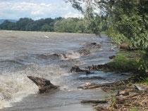 Starker Wellenschlag bestimmt die Uferdynamik