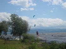 Kite-Surfer nutzen die Flachwasserzone bei Föhn. Oft wird die Grenze zum FFH-Gebiet Im Sand nicht beachtet