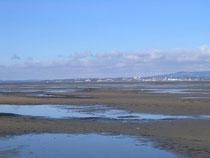 Flachwasserzone am DLRG-Strand im Frühjahr vor der Schneeschmelze