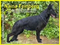 Naina Feinberg