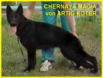 Chernaya Magia von Artig Koter