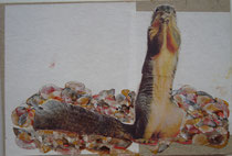 nesttier, collage, papier, öl auf karton, 15 x 12 cm, privatbesitz