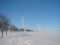 Windpark Bayerhöhe
