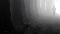 corsa nella nebbia