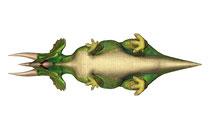 トリケラトプス ボトム画像
