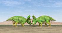 トリケラトプスの戦い