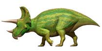 トリケラトプス サイド画像