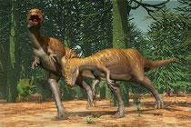 パキケファロサウルスの縄張り争い