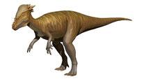 パキケファロサウルス、45°画像