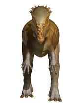 パキケファロサウルス、正面画像