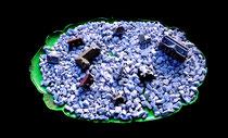 """""""Gefangenes Dorf"""" / Werkverzeichnis 4.239 / gefertigt 2017 Tablett, grün besprüht, gefüllt mit Kies und verschiedenen Häusern. Maße ca. b 50,0 cm * ca. t 32,0 cm * h ca. 3,0 cm"""