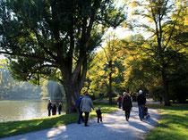 Spaziergänger. Weg am Ufer des Lietzensee. Foto: Helga Karl