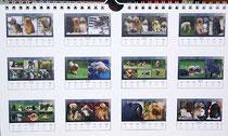 Tibet-Terrier-Kalender 2013