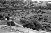 Vue d'ensemble, octobre 1960. A gauche, le quartier d'Aïn Zida et Bou Sebhâne, à droite au fond, Bouzelazel et Beni Saïd, à droite au premier plan, Dar Amar