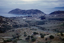 Le camp d'Aïn Zida et Collo fin novembre 1960