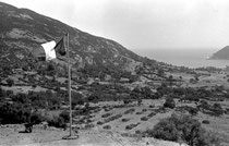 Le regroupement d'Aïn Zida au mois d'août 1960. Gourbis implantés dans l'axe de la pente.
