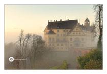 Heiligenberg im Nebel