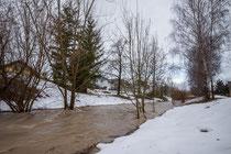 Hochwasser an der Aach
