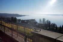 Nebel über dem Bodensee (Birnau)