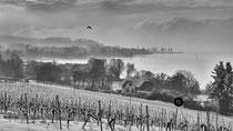 Wintereinbruch am See (Birnau)