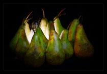 Shining Pears