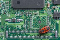 Bugs im Computer