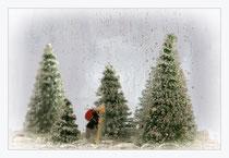 Weihnachtsmarkt Wunder Wald