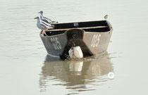 Boot kentert