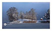 Schlosssee im Winter