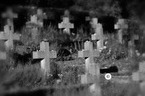 Die alten Kreuze auf dem KZ-Friedhof bei Birnau