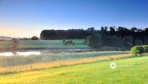 Morgenerwachen am Killenweiher