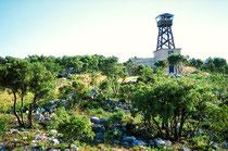 Les vigies, situées dans des tours sur des points hauts des massifs, scrutent la forêt et donnent l'alerte à la moindre fumée suspecte. Ce système de surveillance est complété par des patrouilles mobiles terrestres et aériennes. © Catherine TAILLEUX-NOUAL