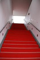 nur für uns... der rote Teppich