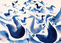 Waterbird 13