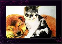 Tierbild farbig gemalt