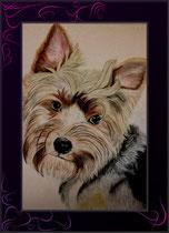 Terrierportrait farbig gezeichnet