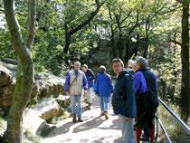 VFMG-Sommertagung: Exk. mit Dr.H.J. Franzke: Rosstrappe bei Thale