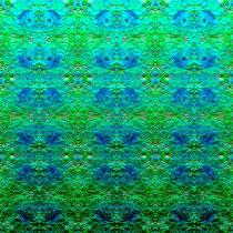 2014 grün-blaue Rosenblüten