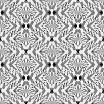 2014 schwarz-weisses Fraktal 1