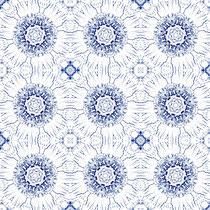 2014 blau-weisse Blüten