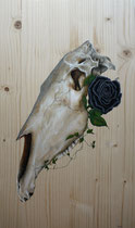 """""""Skull #1"""" acrylique sur bois - 29x49cm - 2018"""