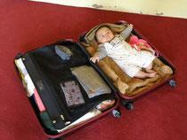 ナムカin スーツケース