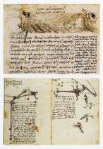 Vol des oiseaux par rapport au vent et étude de la rotation de l'aile, 1513-1514.
