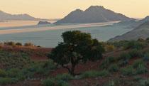 Wolwedans, Namibia 2011