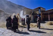 Farmer working in front of the monastery in Tsurphu, Tibet 1993