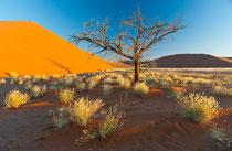 Sossusvlei, Dune 45, Namibia 2011