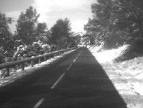 La montée du Pic St-Loup est dégagée
