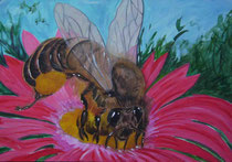 Bienenwelt