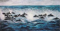 Delfinschwarm